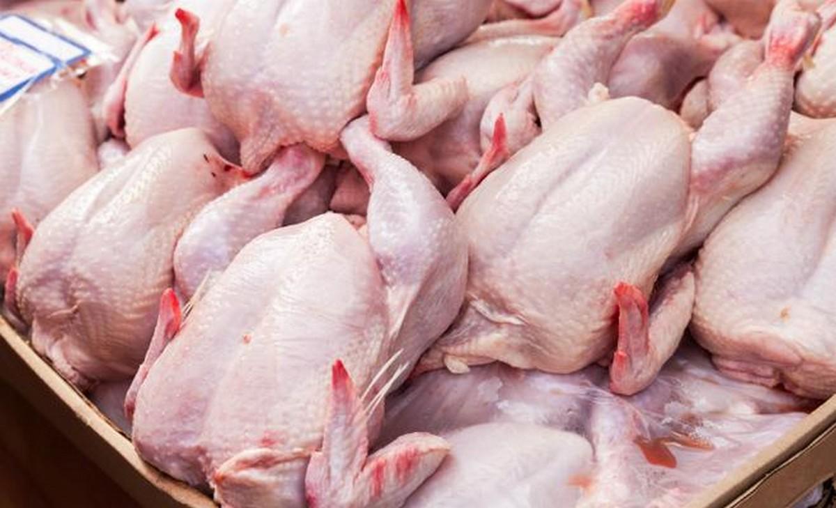 صفاقس : دعوة لأصحاب محلات بيع اللحوم البيضاء إلى تزويد المواطن بعد العيد