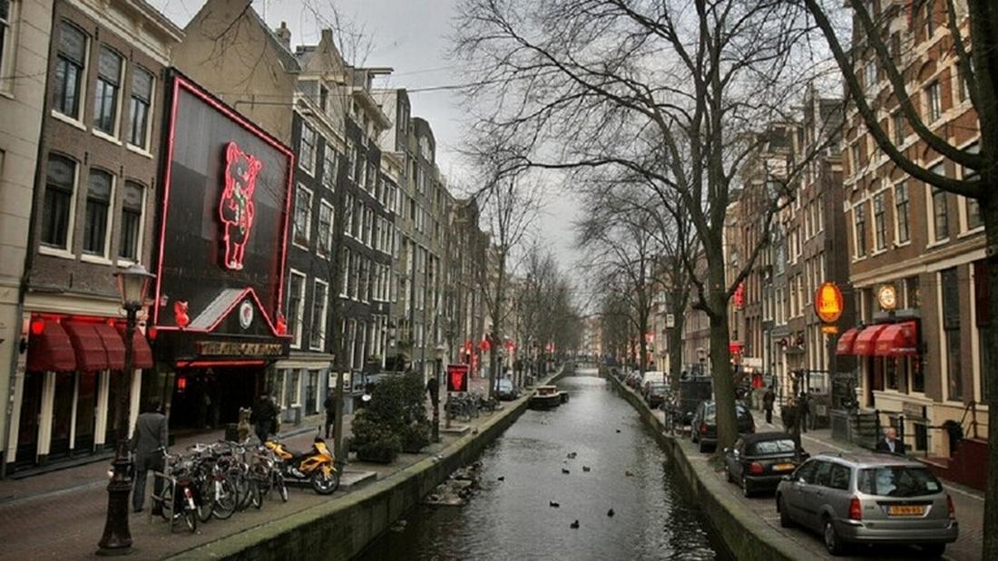 هولندا تتجه لرفع خانة الجنس من هويات مواطنيها
