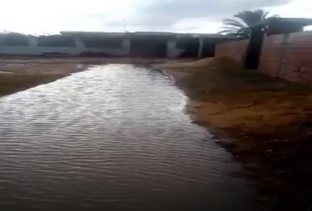 صفاقس : أهالي الحزق اللوزة يستغيثون بعد تهاطل الأمطار الاخيرة