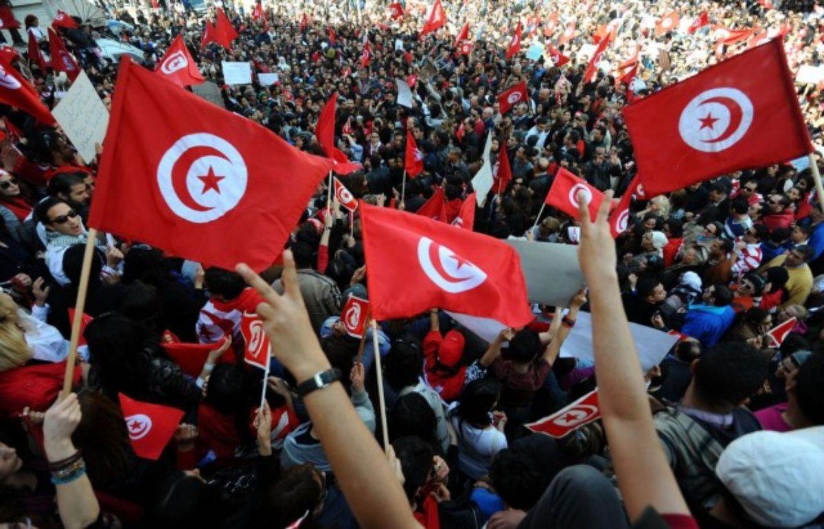 تونس على درب الانتقال الديمقراطي...بقلم د.محمد الناصر بن عرب