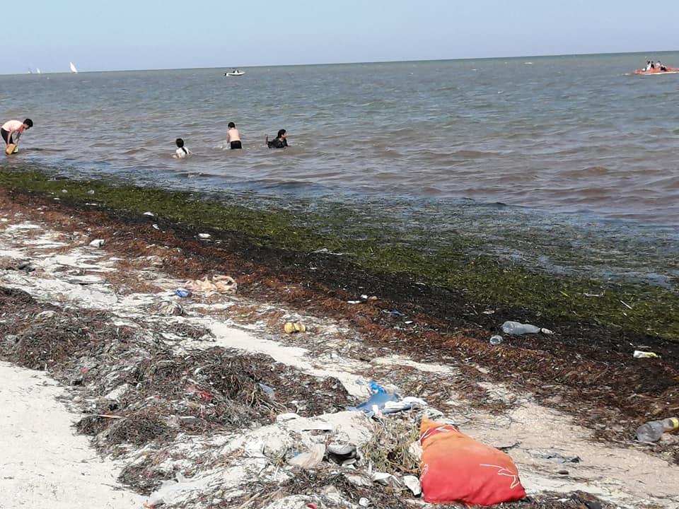 صفاقس : من  يريد  التخلّص  من شاطئ تبرورة؟