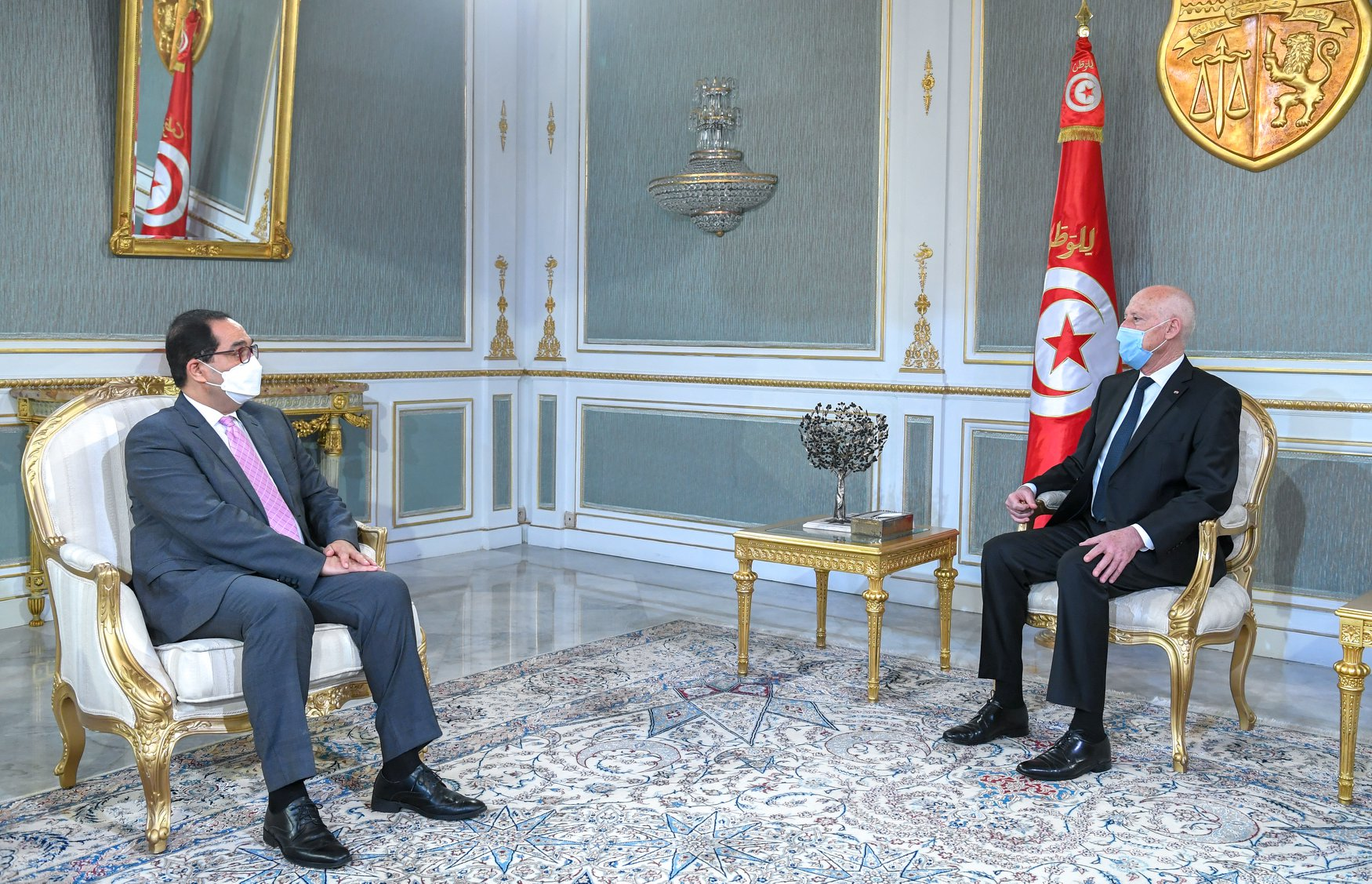 قيس سعيّد يستقبل رئيس الهيئة الوطنية لمكافحة الفساد