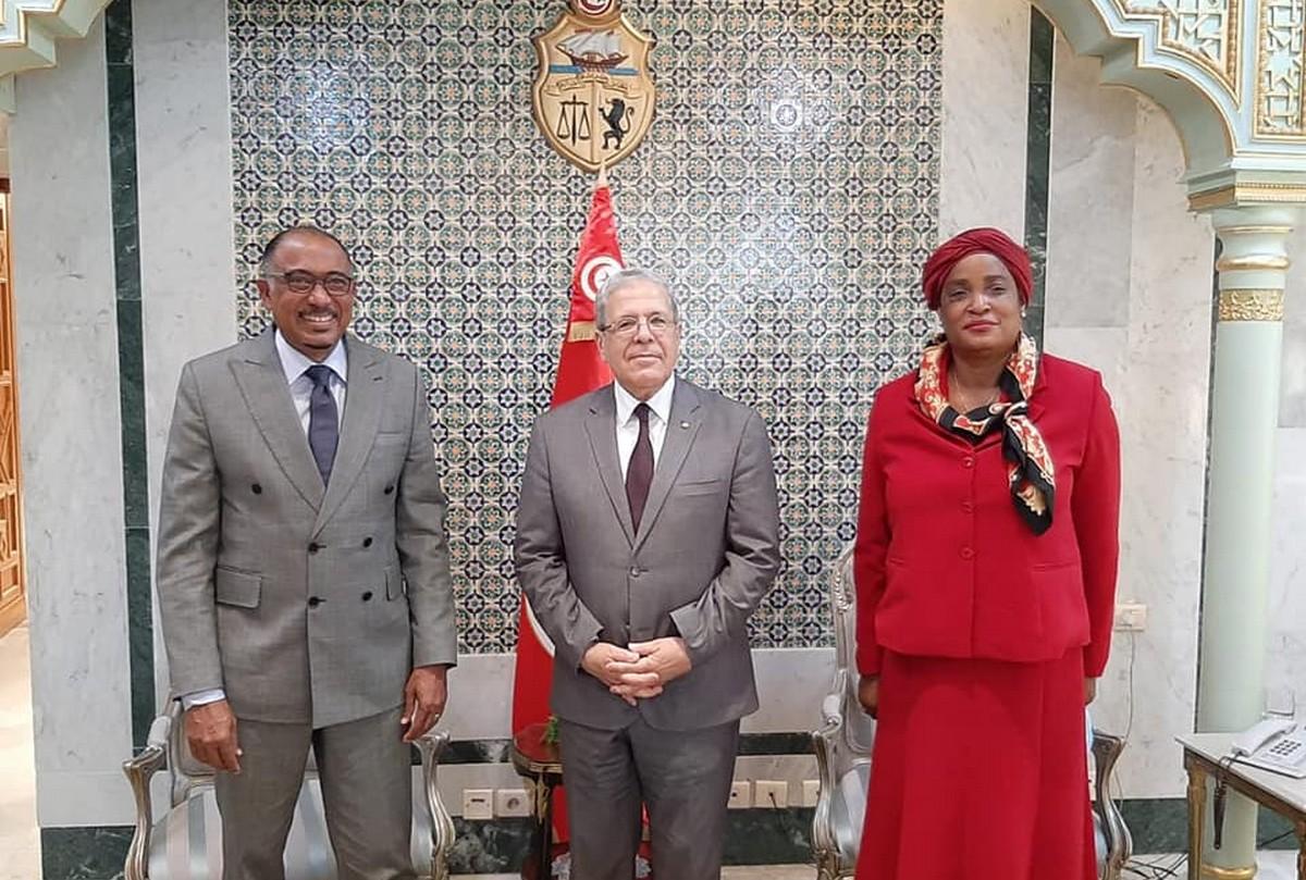 انشاء وكالة افريقية للأدوية ودعم قدرات دول القارة في مواجهة وباء الكوفيد 19